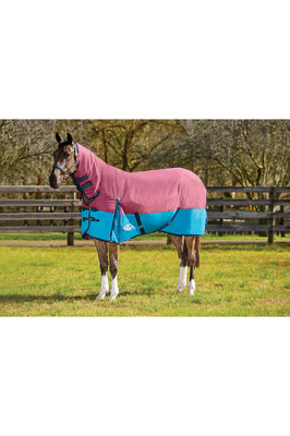 Weatherbeeta Comfitec Essential Combo Neck Medium Shiraz / Teal / Blue